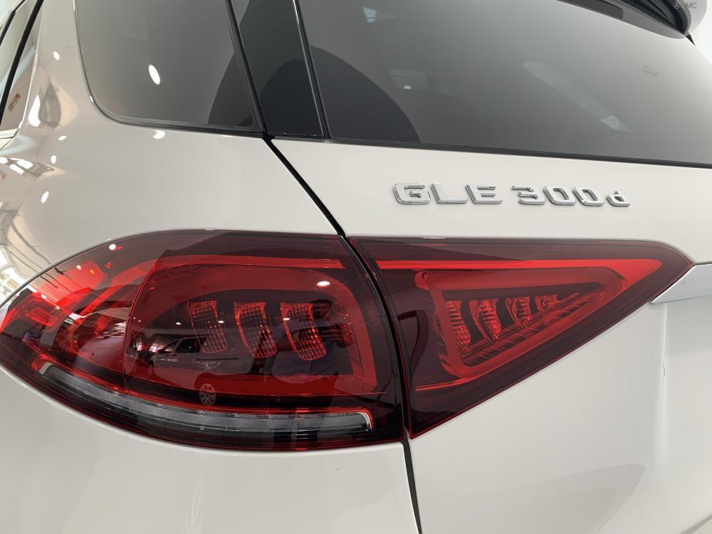 GLE 300d AMG Line